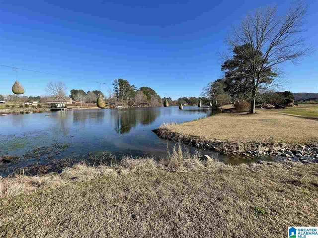 2 Richland Way #1, Southside, AL 35907 (MLS #1284491) :: Lux Home Group