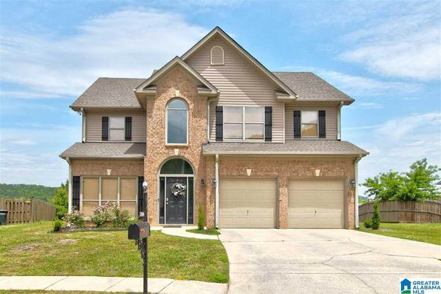 2004 Lake Circle, Sterrett, AL 35147 (MLS #1284546) :: Lux Home Group