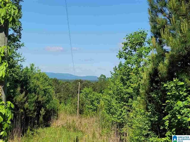 580 County Road 209 #0, Heflin, AL 36264 (MLS #1284591) :: Josh Vernon Group