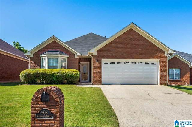 508 Lakeside Circle, Center Point, AL 35215 (MLS #1284694) :: Lux Home Group