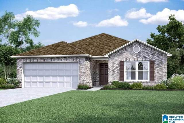 125 Rockwell Circle, Odenville, AL 35120 (MLS #1284706) :: Bentley Drozdowicz Group