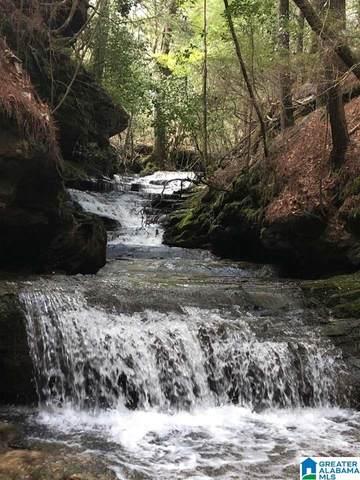 County Road 25 Na, Double Springs, AL 35553 (MLS #1284749) :: Amanda Howard Sotheby's International Realty
