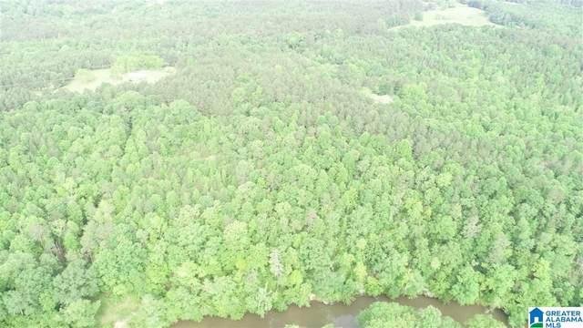 26 acres County Road 532 26 Acres Co Rd , Woodland, AL 36280 (MLS #1284907) :: Howard Whatley