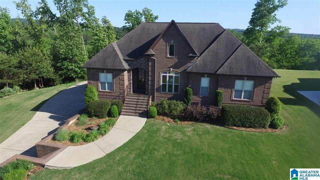 180 Blackburn Ridge Circle, Cleveland, AL 35049 (MLS #1285031) :: Sargent McDonald Team