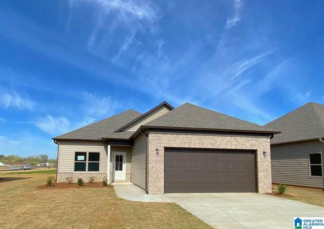 15555 Tide Water Terrace, Brookwood, AL 35444 (MLS #1285044) :: Krch Realty