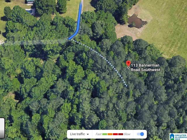 113 Bannerman Road #020.00, Bessemer, AL 35022 (MLS #1285053) :: Bailey Real Estate Group