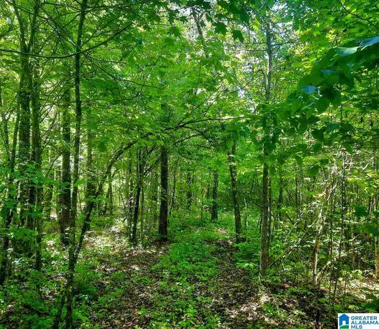 0 Mountain Gap Road 22.5 Acres, Cleveland, AL 35049 (MLS #1285082) :: LIST Birmingham