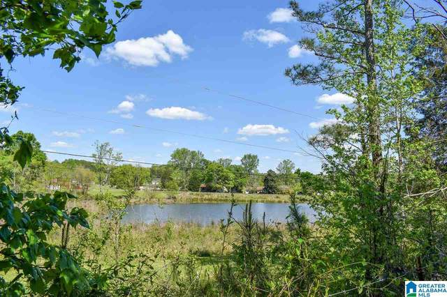 471 Toadvine Road Acreage, Bessemer, AL 35023 (MLS #1285209) :: Bentley Drozdowicz Group