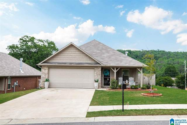 5603 Goodwin Court, Pinson, AL 35126 (MLS #1285256) :: Josh Vernon Group