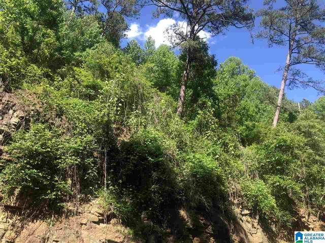 0 Sunset Hill Drive 5 Acres, Pell City, AL 35128 (MLS #1285471) :: Gusty Gulas Group