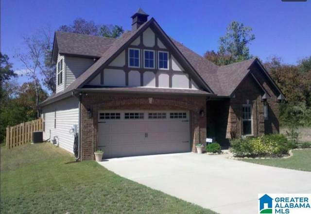 156 Willow View Lane, Chelsea, AL 35186 (MLS #1285521) :: LocAL Realty