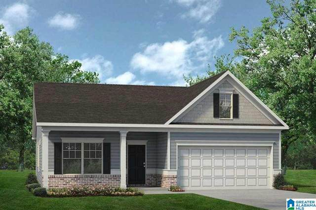 245 Clover Lane, Springville, AL 35146 (MLS #1285709) :: Josh Vernon Group