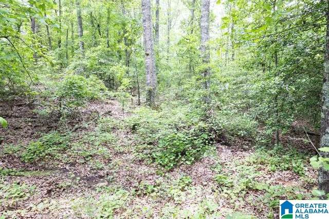 Lot 16 Williams Drive Lot 16, Wedowee, AL 36278 (MLS #1285787) :: LocAL Realty