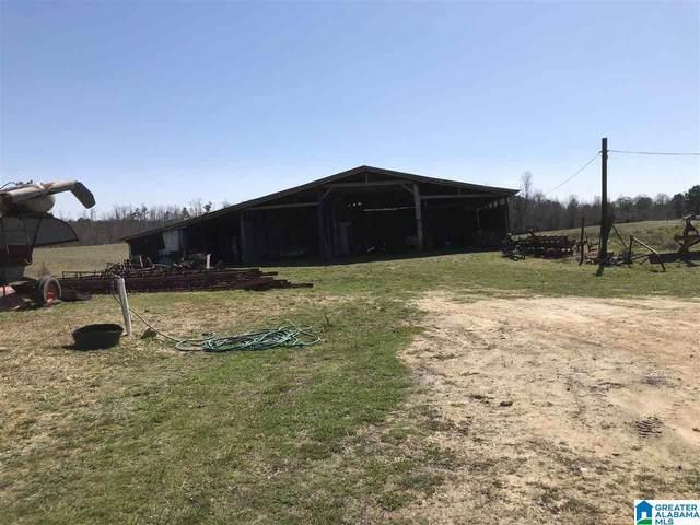 389 County Road 642 #389, HENAGAR, AL 35768 (MLS #1285805) :: Amanda Howard Sotheby's International Realty