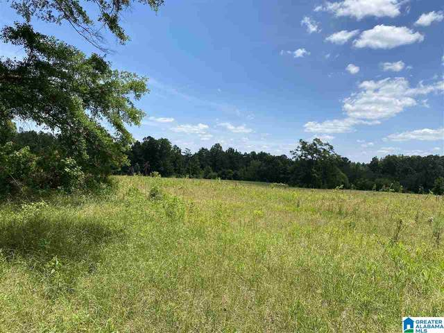 0 County Road 21 #1, Maplesville, AL 36750 (MLS #1286198) :: EXIT Magic City Realty