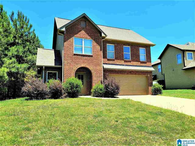 14545 Griffin Street, Tuscaloosa, AL 35405 (MLS #1286221) :: Lux Home Group