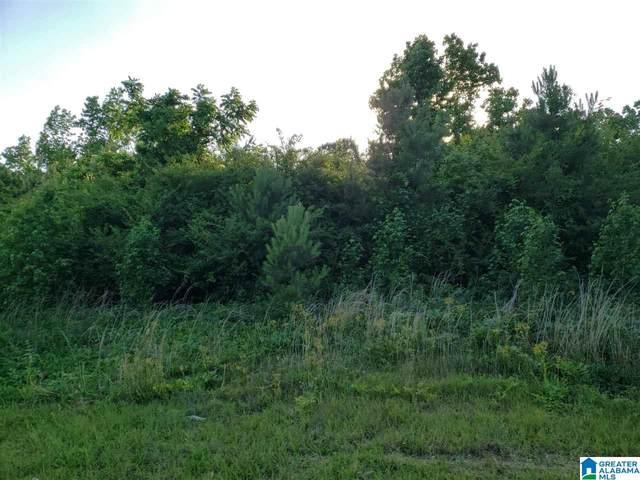 0 County Road 48 #1, Jemison, AL 35085 (MLS #1286372) :: EXIT Magic City Realty