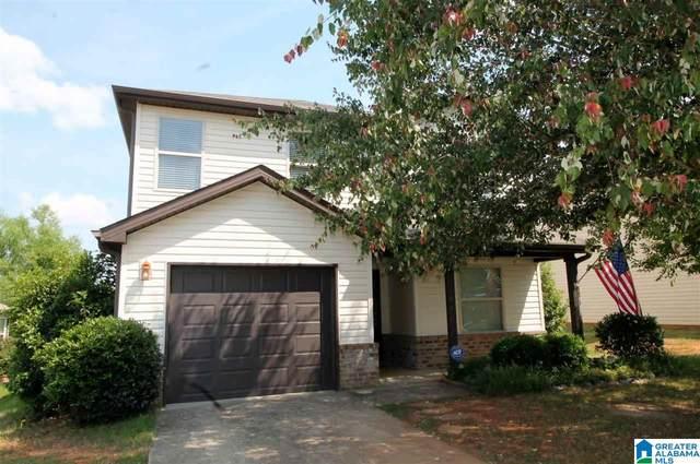 135 Briar Ridge Lane, Odenville, AL 35120 (MLS #1286394) :: EXIT Magic City Realty