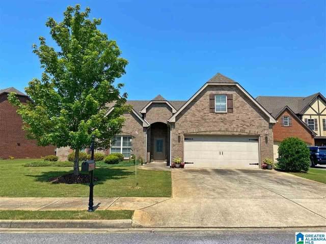 1095 Belvedere Cove, Birmingham, AL 35242 (MLS #1286472) :: EXIT Magic City Realty