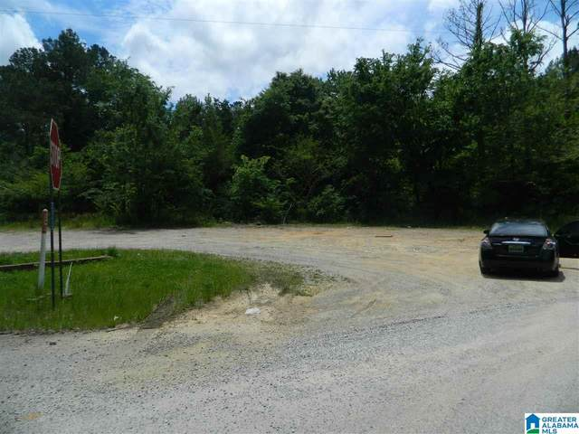 County Road 7 1 Acre, Ashland, AL 36251 (MLS #1286536) :: Lux Home Group