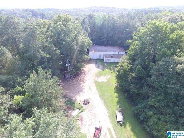 0 Sanie Road 5 Ac, Odenville, AL 35120 (MLS #1286582) :: The Fred Smith Group | RealtySouth