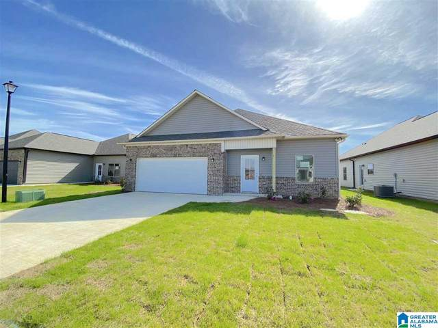 11133 Boxberry Bend, Tuscaloosa, AL 35405 (MLS #1286857) :: Lux Home Group