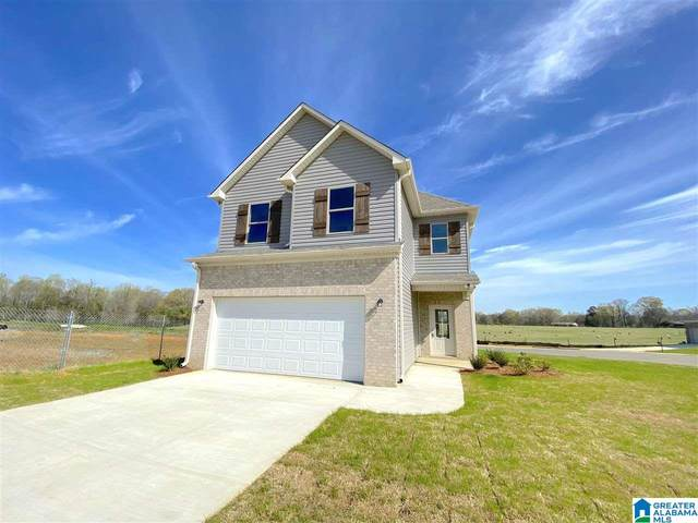 11116 Boxberry Bend, Tuscaloosa, AL 35405 (MLS #1286882) :: Lux Home Group