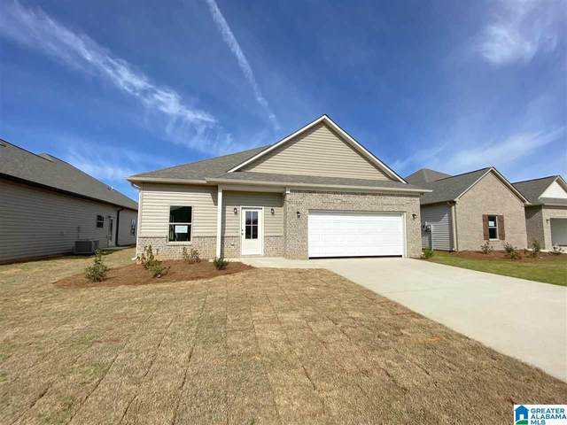 11124 Boxberry Bend, Tuscaloosa, AL 35405 (MLS #1286887) :: Lux Home Group