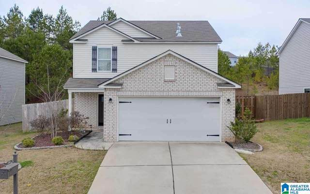 233 Chesser Reserve Drive, Chelsea, AL 35043 (MLS #1287029) :: Lux Home Group