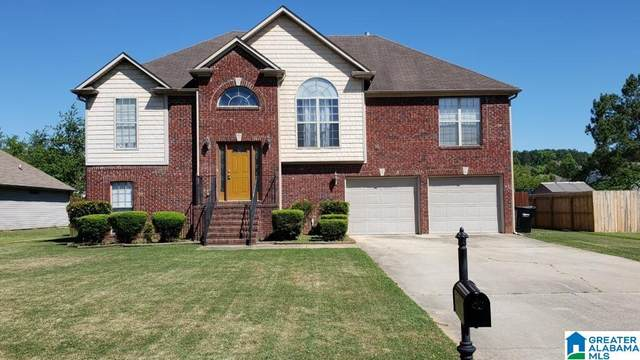 5028 Candle Brook Place, Bessemer, AL 35022 (MLS #1287165) :: EXIT Magic City Realty