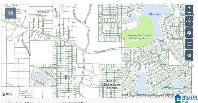LOT24 Hilda Drive #24, Mccalla, AL 35111 (MLS #1287652) :: EXIT Magic City Realty