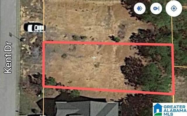 827 Kent Drive #590, Odenville, AL 35120 (MLS #1287968) :: EXIT Magic City Realty