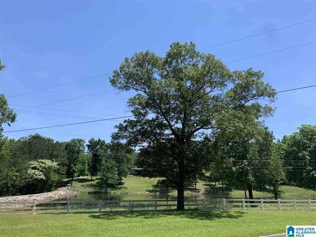 6218 Rock Mountain Lake Road #12.75, Mccalla, AL 35111 (MLS #1288088) :: Josh Vernon Group