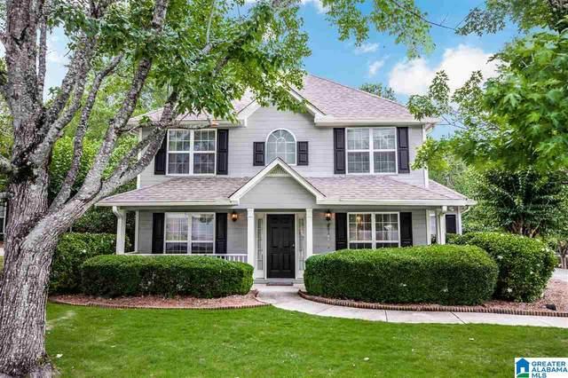 117 Belvedere Place, Alabaster, AL 35007 (MLS #1288187) :: Lux Home Group