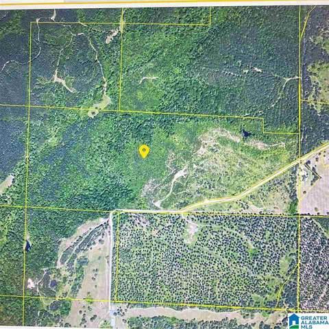 0 County Road 31 #0, Hanceville, AL 35077 (MLS #1288320) :: JWRE Powered by JPAR Coast & County