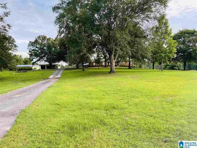 0 Bradberry Lane, Clanton, AL 35046 (MLS #1288459) :: EXIT Magic City Realty