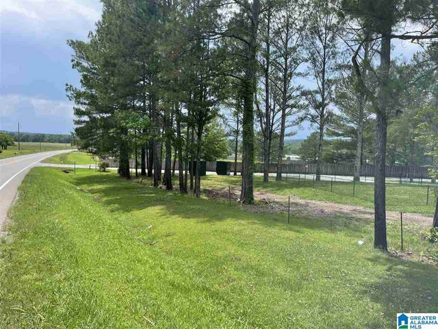 15959 Highway 91, Hanceville, AL 35077 (MLS #1288518) :: JWRE Powered by JPAR Coast & County
