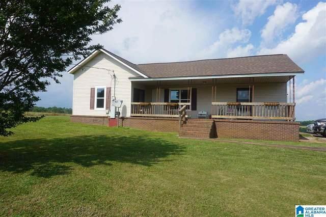 6802 County Road 59, Roanoke, AL 36274 (MLS #1288626) :: LIST Birmingham