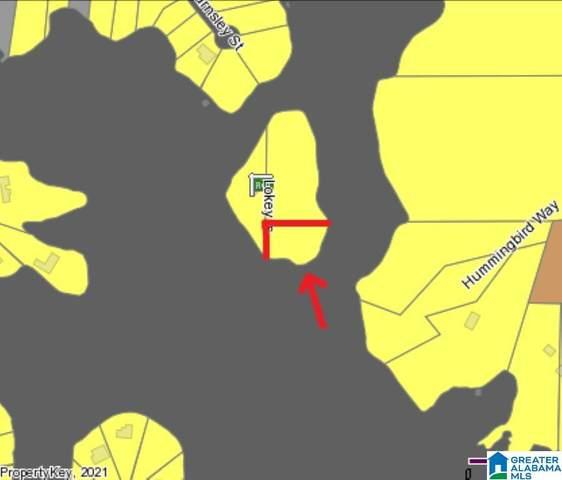 11 Hummingbird Lane 1.01 Acres, Wilsonville, AL 35186 (MLS #1288721) :: The Natasha OKonski Team