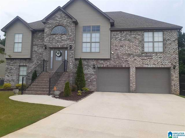 5191 Meadow Lake Trail, Bessemer, AL 35020 (MLS #1288741) :: Lux Home Group