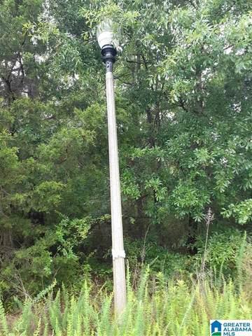 0 Cain Creek Lane W Lot 16, Sylacauga, AL 35151 (MLS #1288785) :: The Natasha OKonski Team