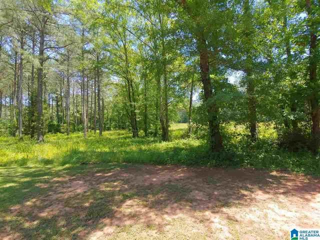 80 Cane Creek Lane #2, Sylacauga, AL 35151 (MLS #1289036) :: Gusty Gulas Group