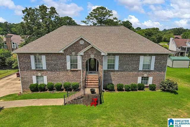 641 SW Elm Street, Bessemer, AL 35022 (MLS #1289039) :: Lux Home Group