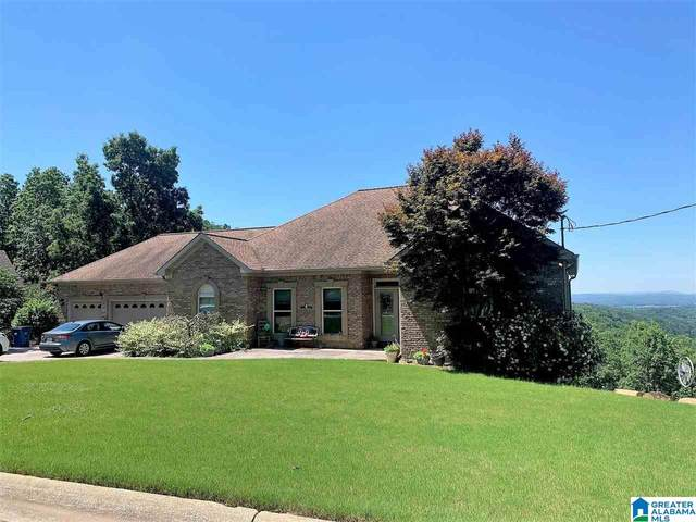 18 Rebecca Trail, Anniston, AL 36207 (MLS #1289056) :: The Fred Smith Group | RealtySouth