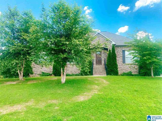 100 Fran Circle, Odenville, AL 35120 (MLS #1289077) :: Lux Home Group