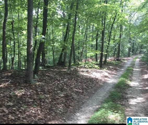 0 Chapel Hill Road 40/15, DOUGLASVILLE, GA 30135 (MLS #1289158) :: Josh Vernon Group