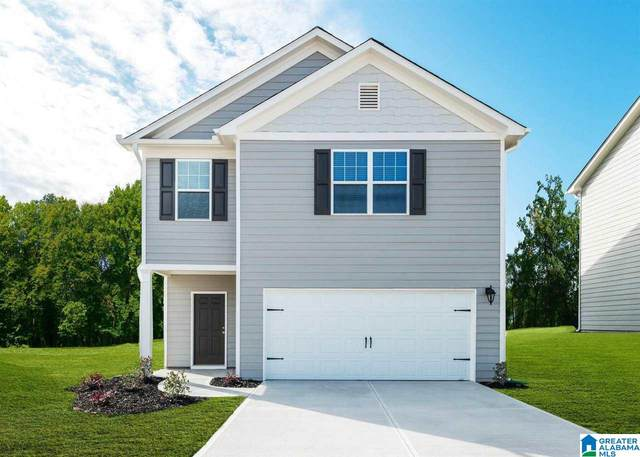 405 Clover Circle, Springville, AL 35146 (MLS #1289238) :: Sargent McDonald Team