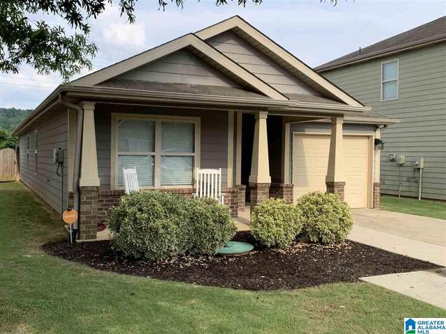 235 Morning Mist Lane, Odenville, AL 35120 (MLS #1289287) :: The Fred Smith Group | RealtySouth