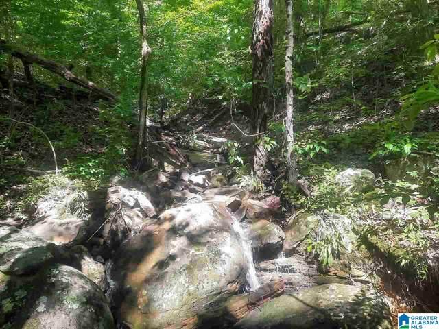 0 Mountain Gap Road #17, Cleveland, AL 35049 (MLS #1289415) :: Sargent McDonald Team