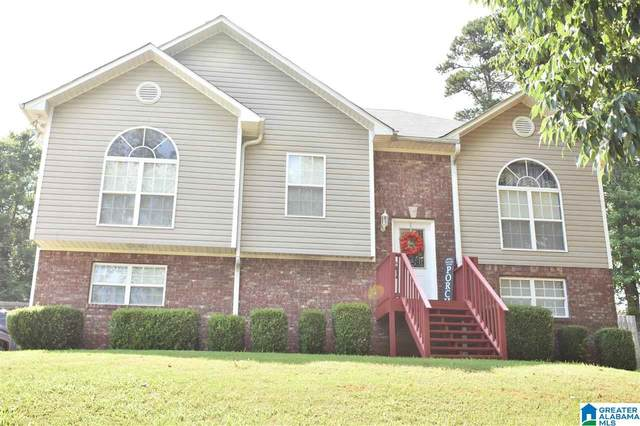 327 County Road 12, Odenville, AL 35120 (MLS #1289549) :: Lux Home Group